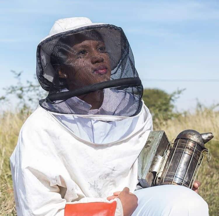 beekeeping in mzansi