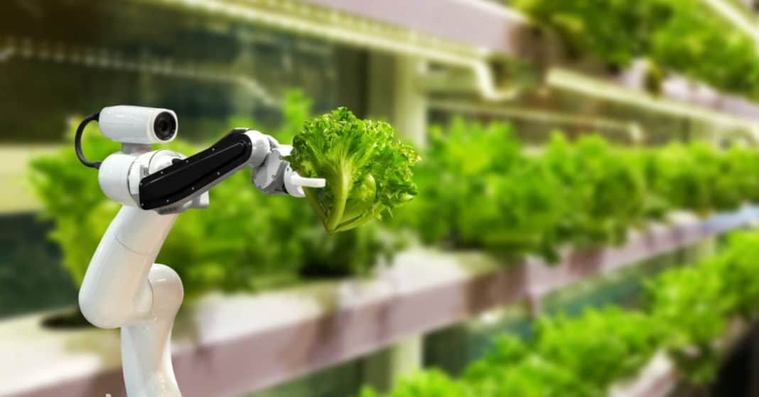 Another eventful week lies ahead in agriculture. The World Agri-Tech innovation summit is on Tuesday, exploring the role of technology in achieving a sustainable, efficient and healthy agri-food supply chain. Photo: Supplied/Food For Mzansi