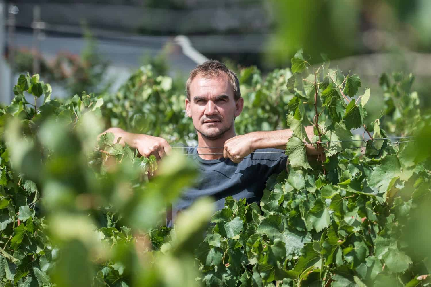 Fourth-generation farmer and winemaker, Philip Jonker is on a mission to change to not only his community, but Africa. Photo: Supplied/Food For Mzansi