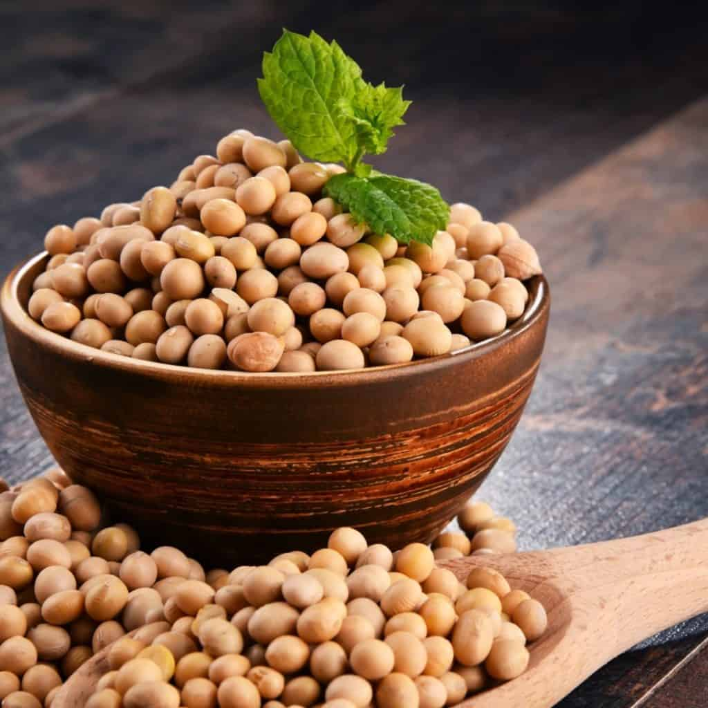 Crop estimates for soya beans are expected to increase during April this year. Photo: Supplied/Food For Mzansi