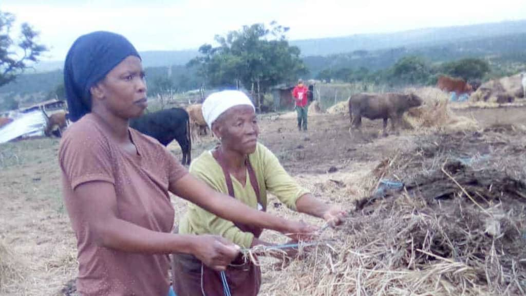 Thembelihle Gxothiwe, the husband of the Eastern Cape MEC for transport, safety and liaison, Weziwe Tikana, is allegedly evicting tenant farmer Neziswa Moyeni and her family off the Sunnyside farm on which they've lived and worked since the 1960s. Photo: Supplied/Food For Mzansi