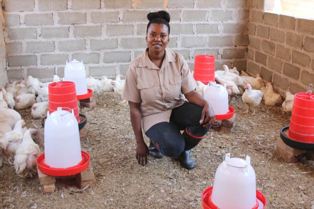 In 2019, Khethiwe Maseko won R30 000 from the department of agriculture and rural development to grow her poultry business. Photo: Magnificent Mndebele/Food For Mzansi