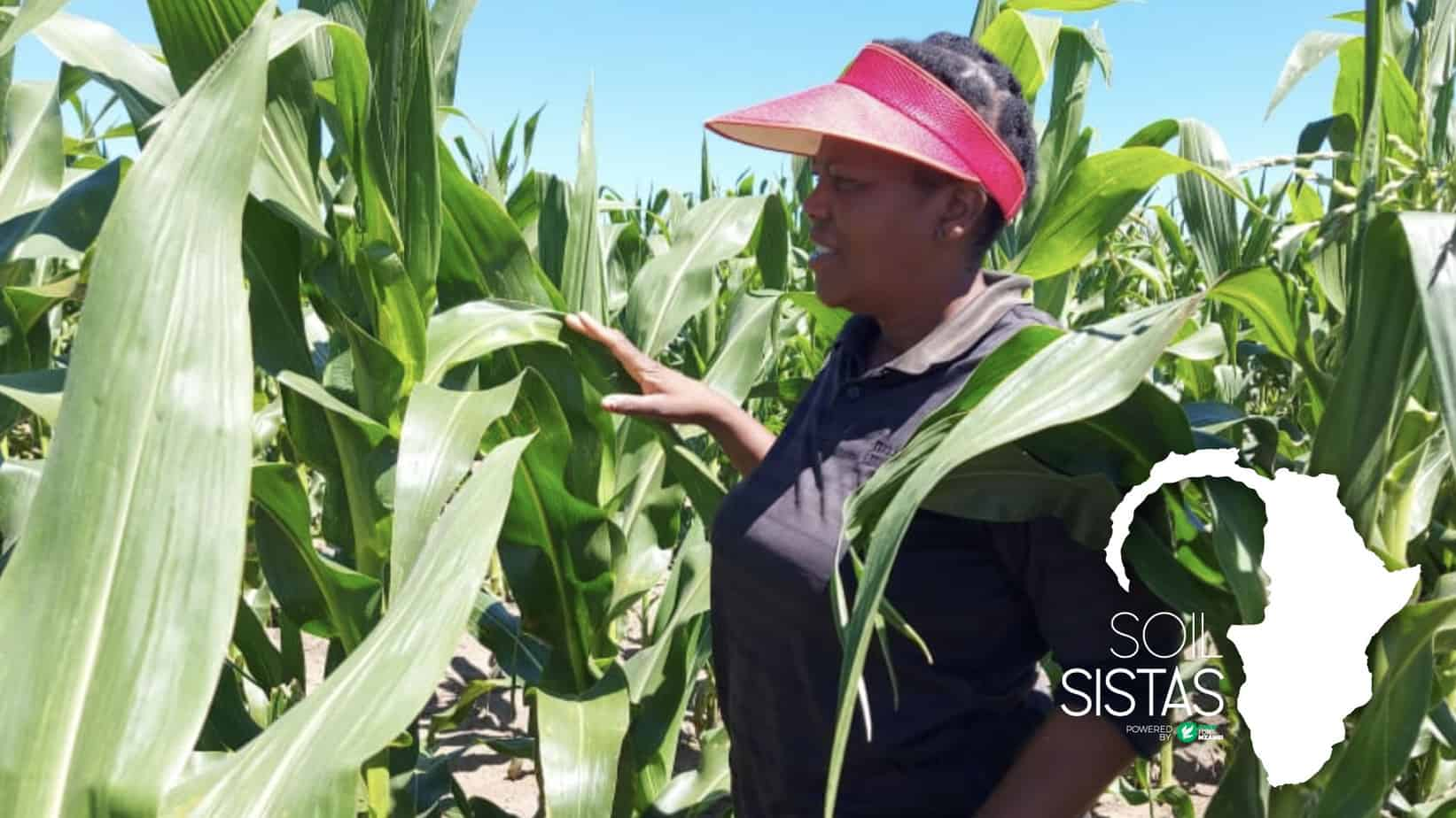 Thalita Zondi (52) started her farming enterprise in Randfontein after a chance encounter: a newspaper advert from the ARC offering courses in vegetable production. Photo: Supplied/ Food For Mzansi