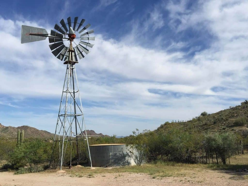 South Africa is a water scarce country and as such requires a comprehensive water management system to ensure that we make the most of what we have by effectively monitoring and managing our freshwater resources and wetlands. Photo: Supplied/Food For Mzansi