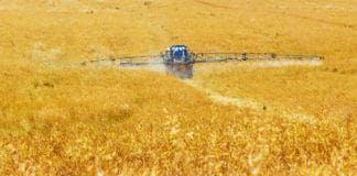Crop farmers are negatively impacted by the high fertiliser prices.