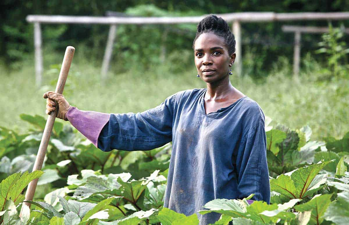 Women entrepreneurs face multiple difficulties in securing funding due to a lack of collateral in the form of land and other tangible assets. Photo: Supplied/Food For Mzansi