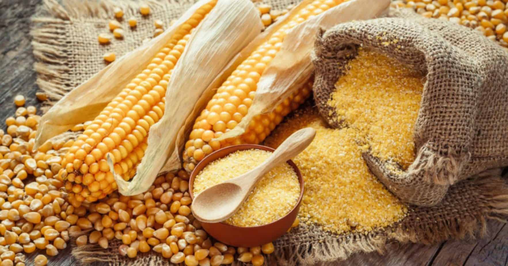 Did you know South African farmers produce enough maize per year to not only meet the local demand, but also supply many other African countries? Photo: Supplied/Food For Mzansi