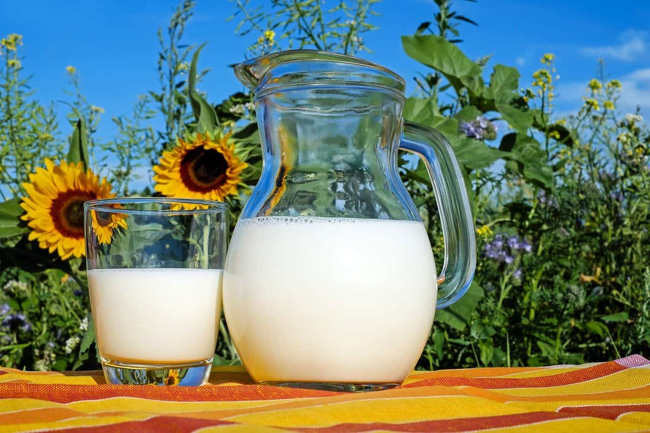 The International Dairy Foundation invites farm leaders from around the globe to join in online for the next dairy farmers roundtable webinar held this Thursday. Photo: Supplied/Food For Mzansi