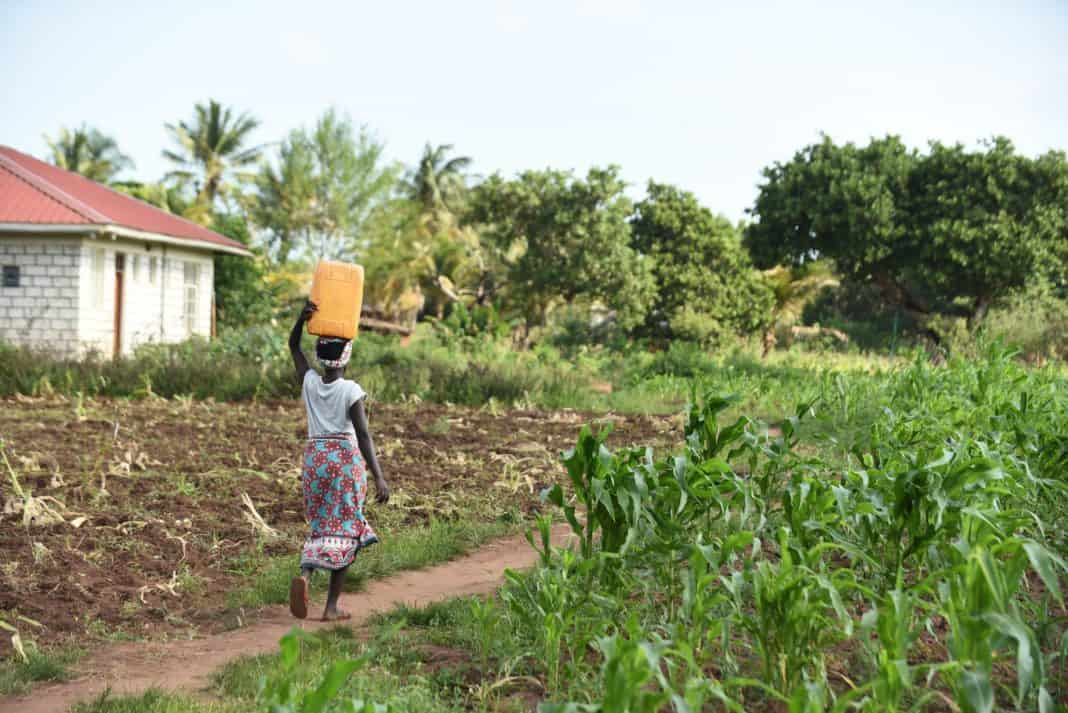 Africa faces great challenges when it comes to water with sub-Saharan Africa achieving an implementation level of just 46% in its degree of integrated water resources management. Photo: Supplied/Food For Mzansi