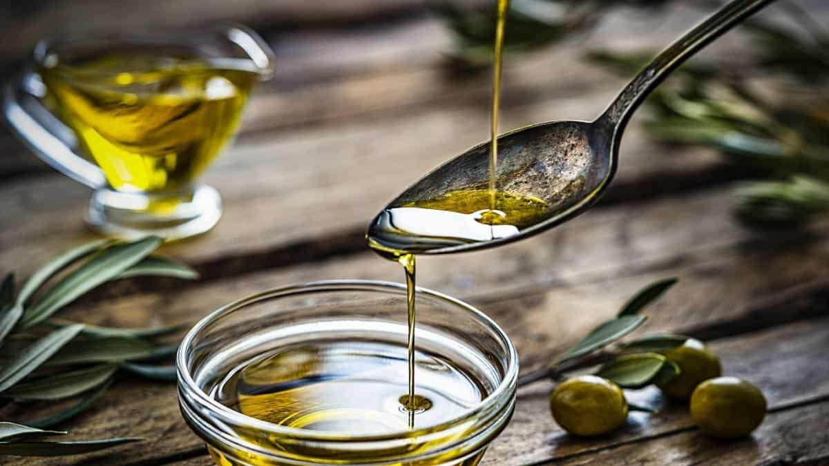 Preliminary indications show that South Africa's olive harvest will be down from last year's records. SA Olive, however, is confident that the quality will continue to be as high as ever. Photo: Supplied/Food For Mzansi