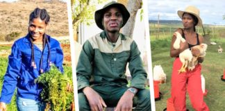 Who will be crowned in the agricultural category at this year's Eastern Cape Youth Awards? Will it be Nezisa Sogoni, Siphesihle Kwetana or Nkosinathi Makamela? Photos: Supplied/Food For Mzansi