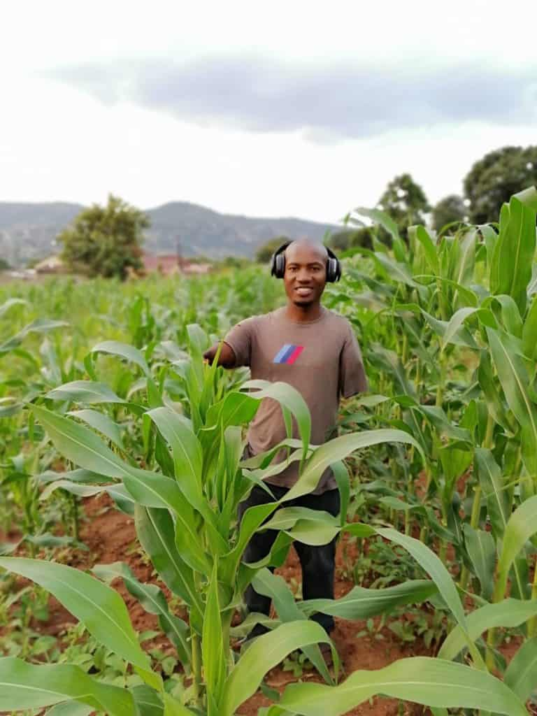 Mbombela young organic farmer Sibusiso Mogale with his beautiful maize. Photo: Supplied/Food For Mzansi