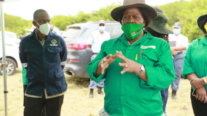 KwaZulu-Natal MEC for agriculture and rural development Bongiwe Sithole-Moloi has declared the new financial year as the year of livestock production. Photo: Supplied/Food For Mzansi