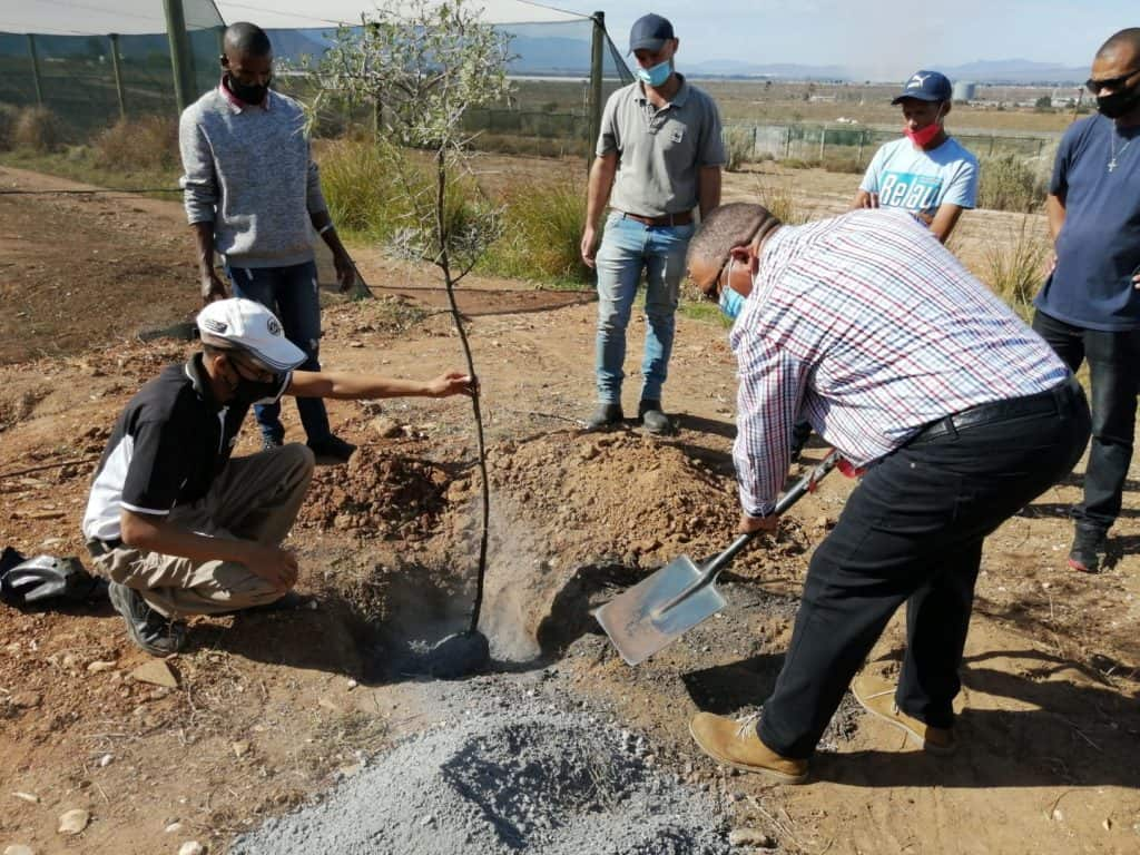 Minister Meyer plants an indigenous tree. Photo: Supplied/ Food For Mzansi