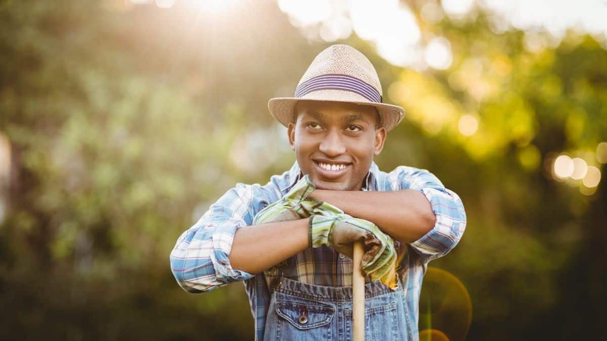 Do you want to jump start your career in agriculture with an internship? Here are five tips to landing an internship in agriculture, and five agri internships for you to apply for. Photo: Food For Mzansi