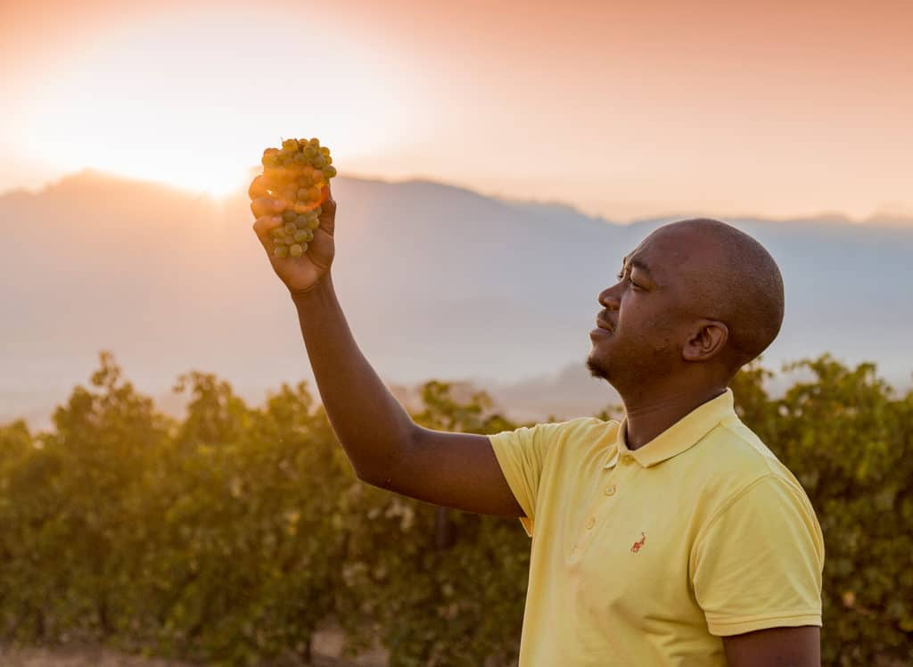 State of the alcohol industry: Co-founder of Tumbaga Wines, Sandile Makhwanazi. Photo: Supplied/Nantes Estate Paarl