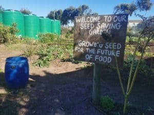 The SEED garden is set up according to permaculture design principles.
