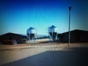 Two of Ntwalebohade Trading's nine poultry feed silos. Photo: Supplied