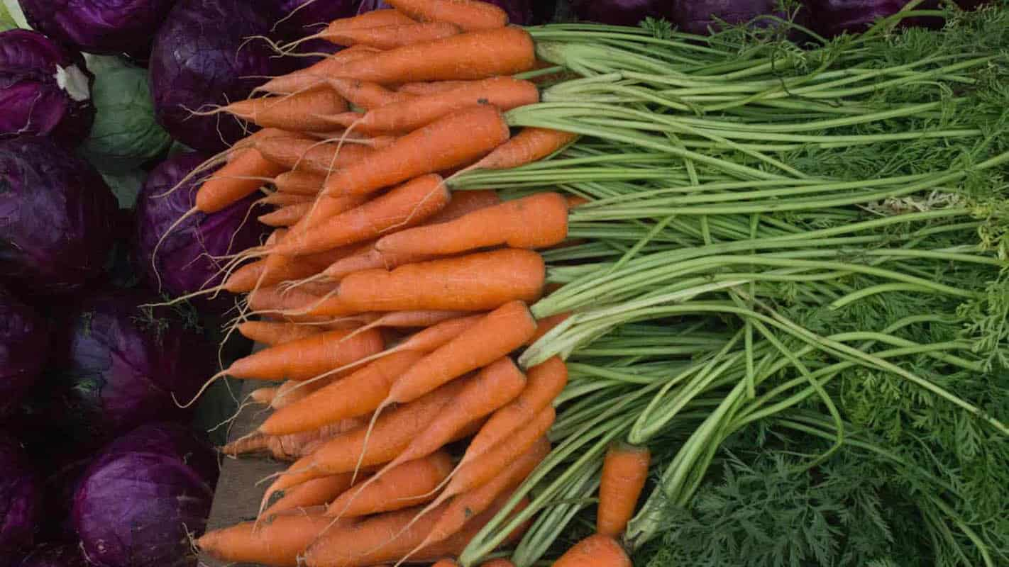 The edible leaves of vegetables like carrots and beetroot are flavourful and healthy foods I their own right. Photo: Chidambara Kumar/Food For Mzansi
