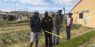 The four friends behing the Abathethi Food Garden in Nyanga are teaching community members in Western Cape townships about the importance of growing vegetables organically to preserve their health. Photo: Supplied/Food For Mzansi
