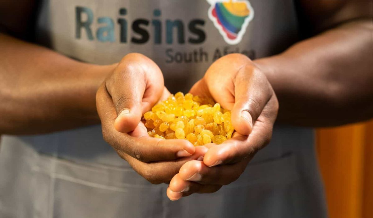 Despite let-downs in the previous raisin season, the industry remains is optimistic about its global positioning. Photo: Supplied/Raisins SA