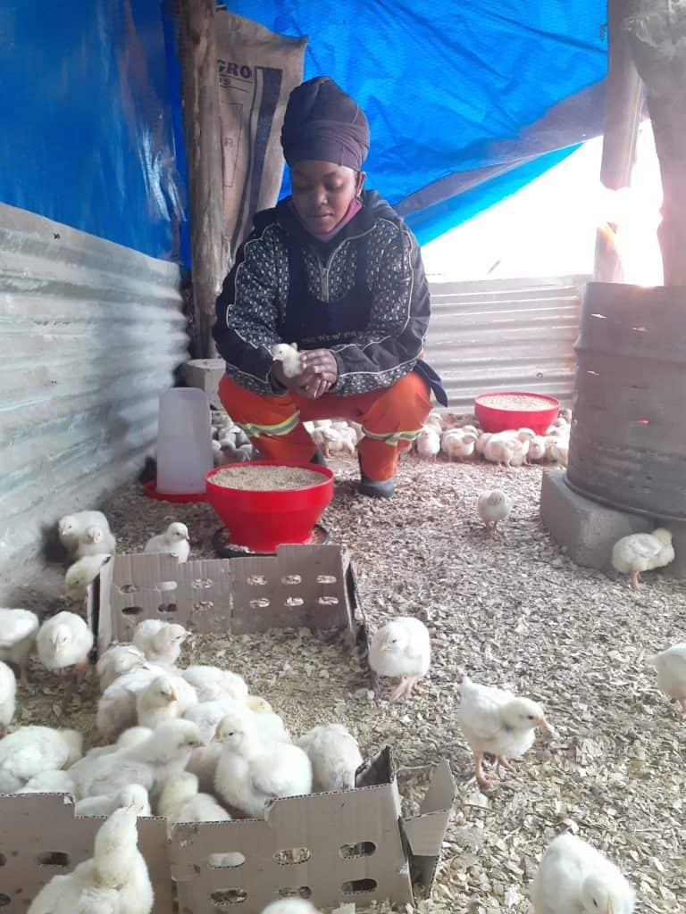 Ramokone Kwakwa, side hustle poultry farmer