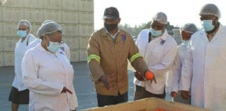 Eastern Cape MEC for rural development and agrarian reform Nonkqubela Pieters is on a mission to develop citrus producers in the province. Photo: Supplied/Food For Mzansi