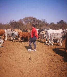 After many years working in a corporate space, Boitumelo Modisane decided to go back to her true love; livestock farming