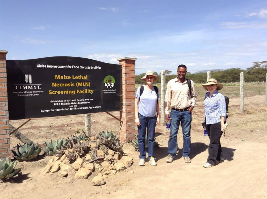 Professor Maryke Labuschagne, Dr Berhanu Ertiro, former PhD student, and Dr Peg Redinbaugh from the United States department of agriculture. Photo: Supplied/Food For Mzansi