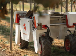 Robots are now treating plant diseases in fields and glasshouses, and will be mapping terrain, picking, packing, and providing logistical support to workers over the course of the project. Photo: Supplied/Food For Mzansi
