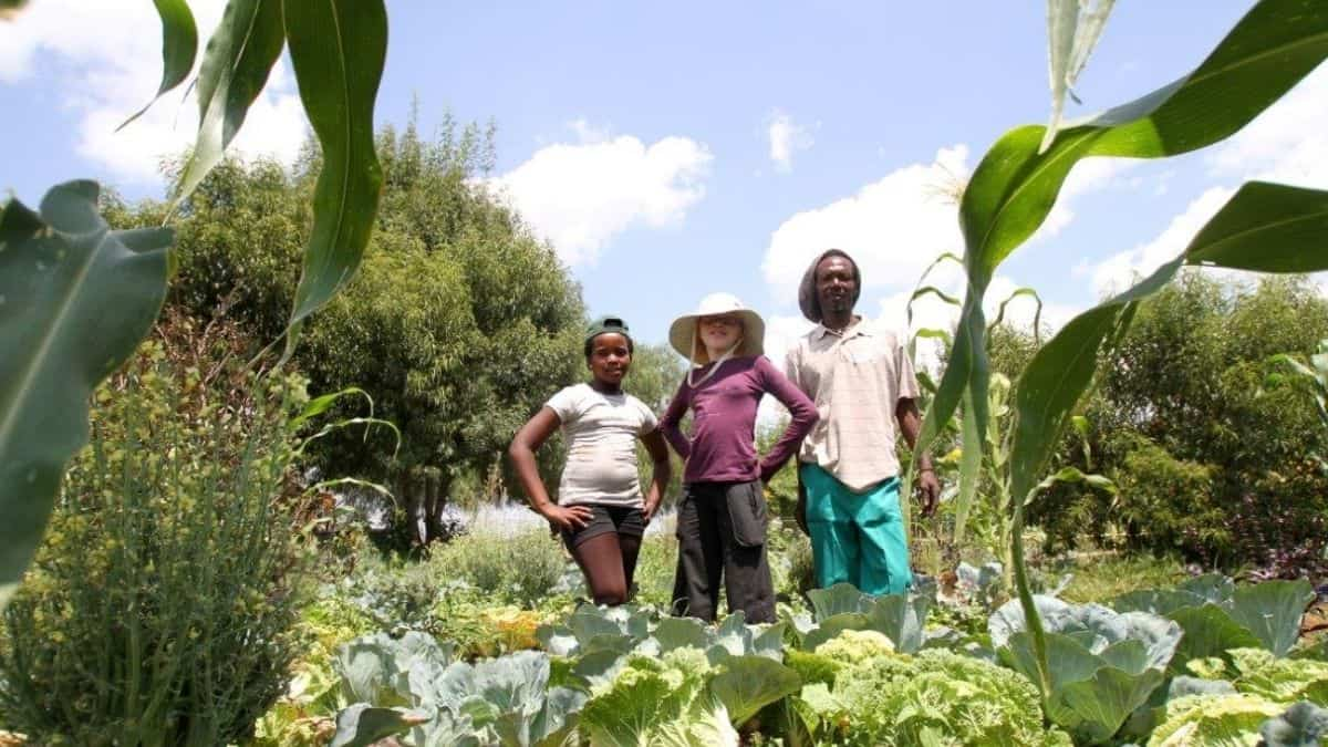 Backyard gardens are seen as a viable strategy to help families to mitigate hunger and will receive institutional support. Photo: Supplied/Food For Mzansi