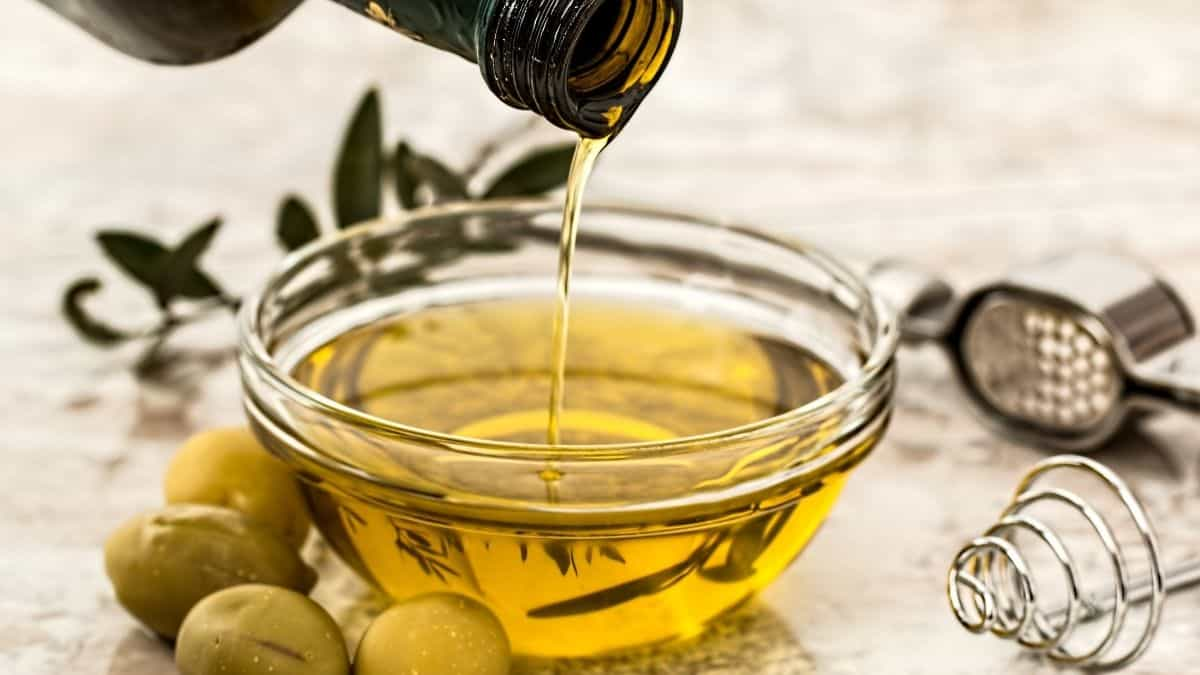 Five SA Olive Industry Association members won nine awards at this year's New York International Olive Oil competition. Photo: Supplied/Food For Mzansi