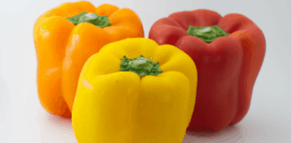 Poor weather conditions across the globe are affecting the supply of peppers in many markets, however this wont affect Mzansi's bell pepper prices. Photo: Supplied/Food For Mzansi