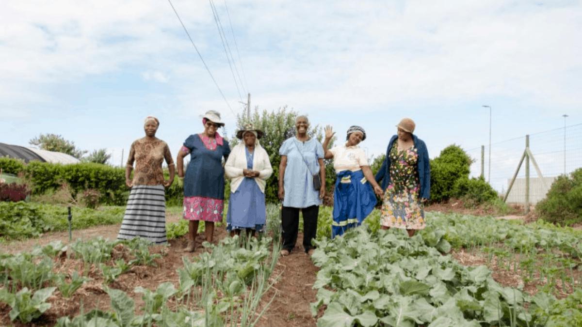 community farmer