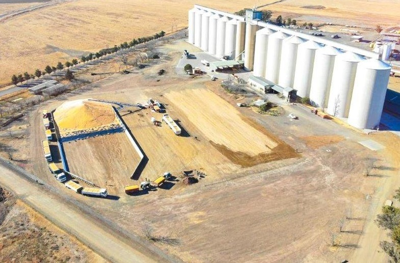 VKB's grain facilities are equipped to receive, send and safely store various grain and oilseed products at a high rate by road and rail. Photo: Supplied/VKB