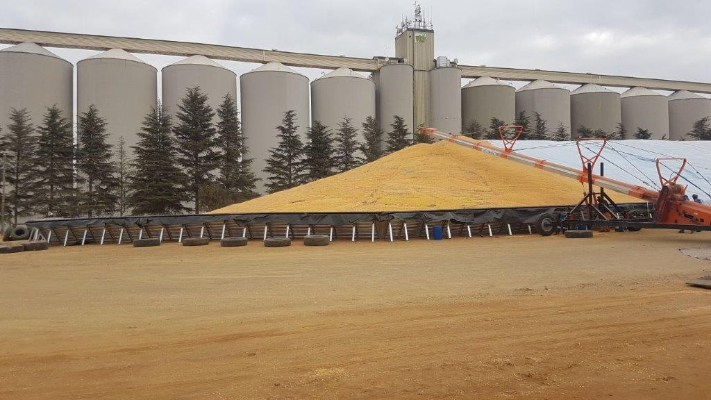 Before the silos were built, grain was stored in bags at VKB storehouses at various points all over VKB's service area. Photo: Supplied/VKB