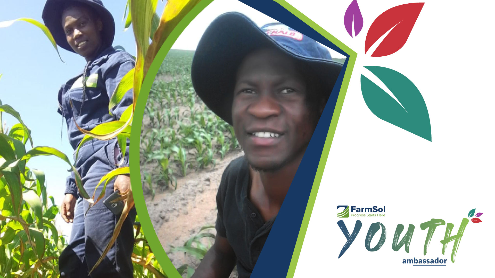 With the help of FarmSol, the Ntuli Siblings are carving their own way in the agricultural sector. Photo: Supplied/ Food for Mzansi