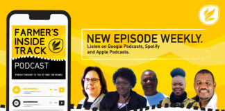 This week's farming podcast features (from left) Carolien Sampson, Prof Lindiwe Sibanda, Dr Naudé Malan, Erasmus Sefoloshe, Nthabiseng Mathebula, and Aron Kole. Photos: Supplied/ Food for Mzansi