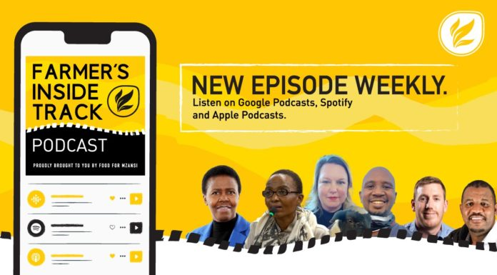 This week's podcast features (from left) Lindiwe Sibanda, Alice Radebe, Melanie Baumeister, Malome Thato, Josef van Wyngaard, and Aron Kole. Photos: Supplied/Food For Mzansi.