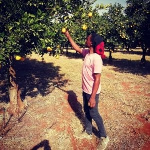 Makola has spent the lastfour years of his career working on Masimo Farms in Limpopo.
