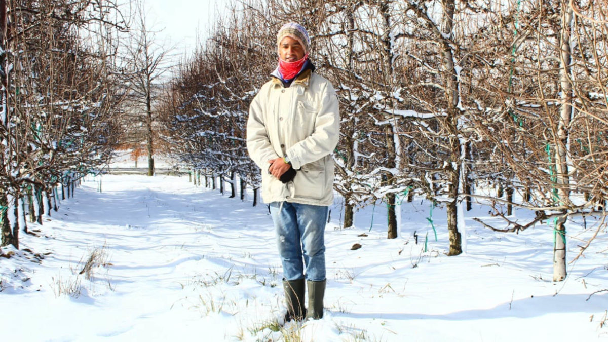 Budding agriculturist Aiden Abrahams on the snow-covered farm of Laastedrif Agri in Ceres in the Western Cape. Photo: Supplied/Food For Mzansi
