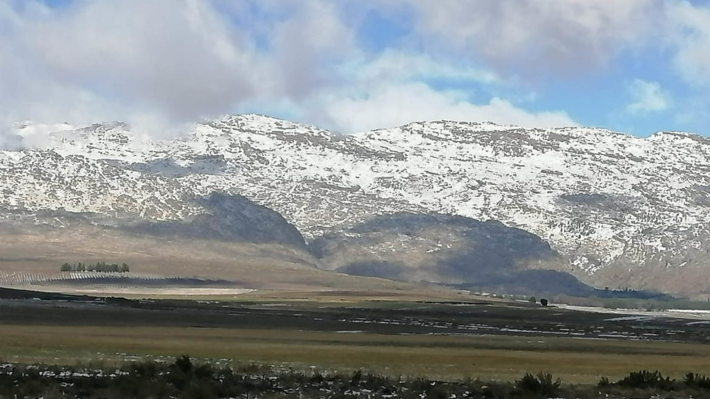 The Matroosberg in the Western Cape is currently covered in show. Photo: Supplied/Aiden Abrahams
