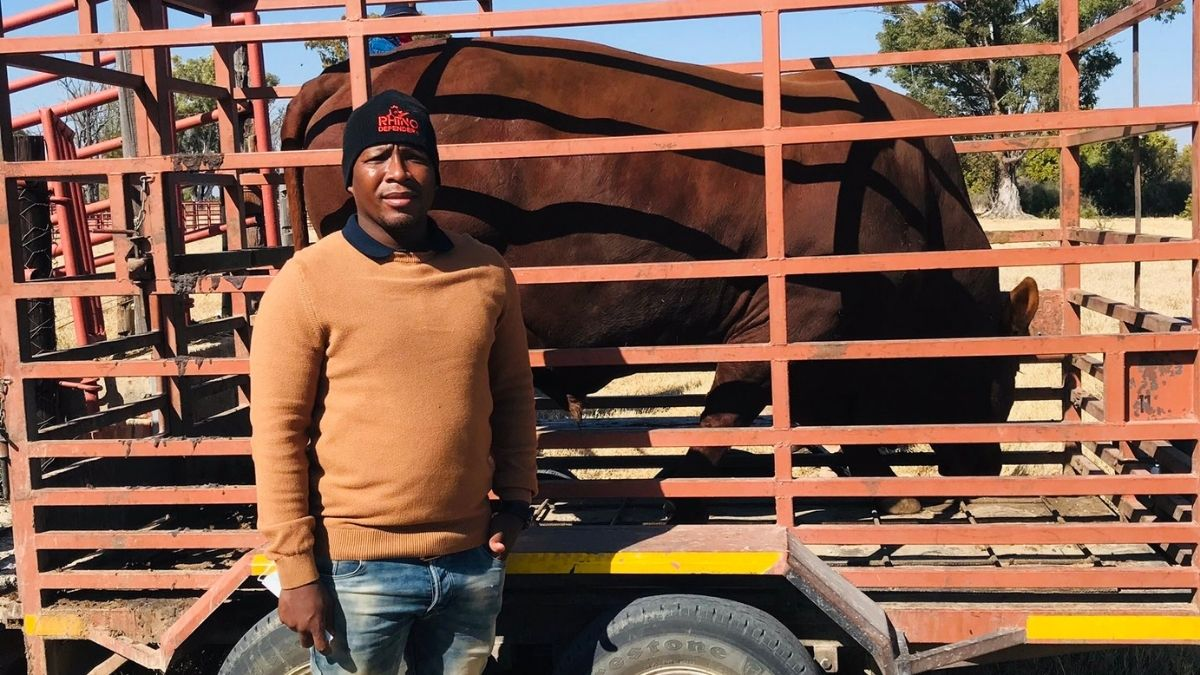 Olerile Lekgetho, a livestock and vegetable farmer from North West, was one of the ten young farmers who received a Bonsmara bull from the provincial department of agriculture and land reform. Photo: Supplied/Food For Mzansi