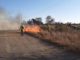 The recent southern Free State fires are reported to be the biggest in provincial history. Photo: Supplied/FSA