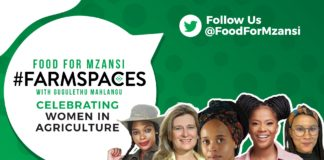 agriculture events: Join Us this Monday for farmspaces. From Left: Ipeleng Kwadi, Professor Lise Korsten, Kamo Bombe, and Tamsin Davids. Photo: Supplied/ Food for Mzansi