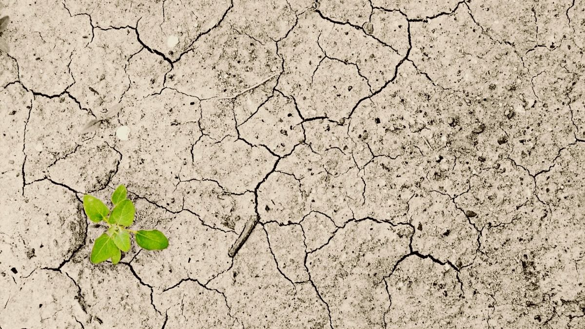 climate change droughts