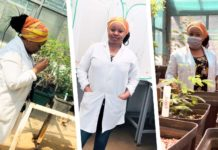 Crop scientist Boitumelo Mhlanga's job involves saving and developing agricultural crop. Photo: Supplied/Food For Mzansi