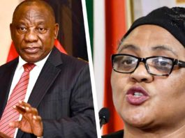 Cabinet reshuffle: President Cyril Ramaphosa and Thoko Didiza, the minister of agriculture, land reform and rural development. Photos: Supplied/GCIS