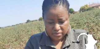 An environmental scientist by trade, Manamela now farms with cattle and vegetables on the communal lands she grew up on. Photo: Supplied/Food For Mzansi.