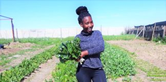 Sinethemba Botha, calls her food garden a food forest packed carrots, peas, beetroot, brocolli, spinach, cabbage, onion, red onion, kale, parsley, coriander, African Kale and much more. Photo: Supplied/Sinethemba Botha